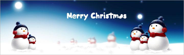 Merry Christmas! Time to save 30%