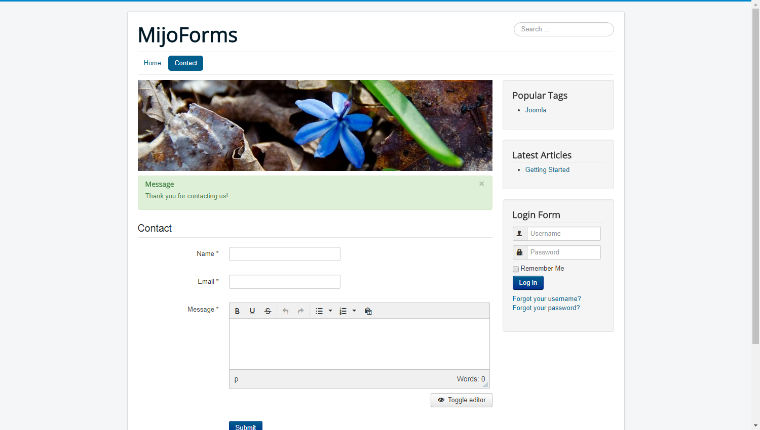 Front-end: Form